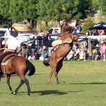 Rodeo in Trevelin, das ist immer ein Volksfest
