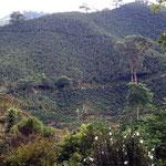 Das Kaffeeanbaugebiet in Kolumbien südlich Manizales gehört zum UNESCO Weltkulturerbe