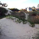 Am Rio de la Plata hat es viele Sandstrände und oft auch Sanddünen