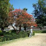 Sommerliche Wärme in Cochabamba