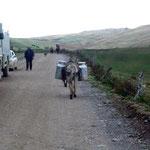 Wir kreuzen einen Milchtransport in den Anden