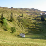 Bergwiese Abrahamhof Sicht auf Rinneralm