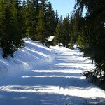Höhenloipe und Wanderweg