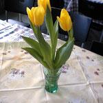Hotelのテーブルのチューリップ、黄色が鮮やかできれい