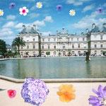 ルクサンブルグ宮殿、パリっコの日向ボッコ御用達の場所、ピクニックにもいいよ