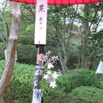掛け軸の代わりに川柳が書かれた札とお花と花と器があり、各流派の個性が光るね、ここも見所