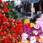 ✿これはPARISのMarcheの薔薇です、ヨーロピアンは薔薇が好きなので種類も多く、キレイ✿