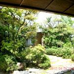 茶室の庭は作りが伝統的な純和風で落ち着く