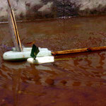 Regatta: Boote aus Bambus & Styropor. Segel aus Plastikabfall bzw. Bananenblatt, Kambodscha