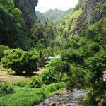 Grüne Insel Fatu Hiva