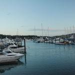 Teure Hamilton Island Marina