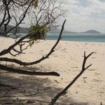 Unglaublich feiner Sandstrand an der Whitehaven Beach