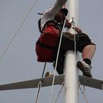 Tom auf dem Mast