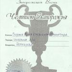 Чемпион Запорожья