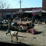 Life at a cross road in Rajhastan