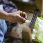 コットンボールを一つずつ外し、綿繰り器で種を取り除きます。