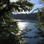 La lac Pavin