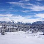 Le Mont Blanc est en arrière plan à gauche