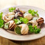 Les escargots de Bourgogne