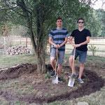 Raphael und Yannik beim Abstechen der Fläche
