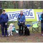 Gilbron Pride Smart Chilli Pepper during retrievers test 28.09.2013