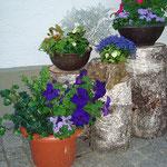 Ferienwohnung Meindlhof: Blumen