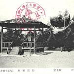1928 | Справа - дерево, посаженное принцем-регентом Хирохито в августе 1925(север)