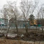 остатки парковой зоны