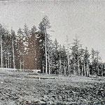 1912 | Храм Каннуза тайся (юго-восток)