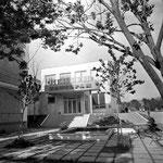 1979 | ул. Ленина | Ресторан Нептун в здании магазина Океан