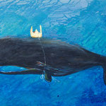 "Deep Waters, 18"" x 24"", acrylic on canvas, 2013"