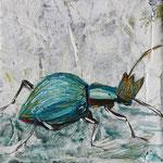 "Beetle Queen, 4"" x 4"", acrylic on canvas, 2014"