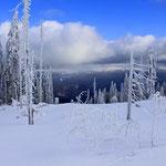 In der Skitourenspur zwischen Mittagsplatzl und Arber