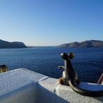 2017 Oktober unterwergs mit der MS-Trollfjord auf Hurtigruten   ...nur schön...