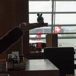 2016 Haithabu  Eine Reise beginnt..