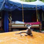 2016 Schloss Wellenberg  Ohhh das wär doch mal ein Bett....   einfach Königlich