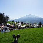 2018 Obergütsch Luzern - auf dem Weg nach Luzern..