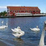 Fiskebrygge und Sjöhus