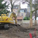 Le tronc des arbres a été protégé