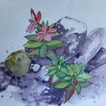 """""""Island - Blumen"""", Zeichnung, Aquarell, 2019"""