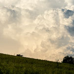 Schleitheim (Switzerland) - Cumulonimbus calvus clouds just before a big thunderstorm     © Stephan Stamm