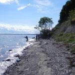 Der Ostseestrand.