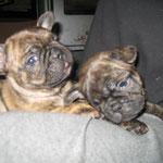 Isalie & Isabeau