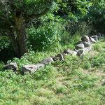 Alle Steine, die uns in die Quere kommen, verarbeiten wir zu einem neuen Wall.