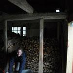 Diesmal wird das Holz ordentlich gestapelt, ich habe Angst, dass wir sonst nicht alles unter bekommen.