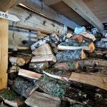 Brennholz aus 2018