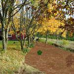 Auf der braun gekennzeichneten Fläche soll einmal unser Gemüsegarten entstehen. Im grünen Feld wuchsen die Johannisbeeren.