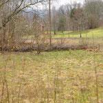 Im Wäldchen an der Nordseite haben wir etwas aufgeräumt und eine weitere Totholzhecke angelegt.
