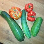 """Zucchini, """"Ingeliese"""" (wahrscheinlich Ochsenherz-Tomate) und Gurke """"Tanja""""."""