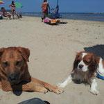 Kira e Rudy
